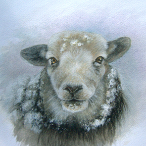 Pamela Budge artist sheep